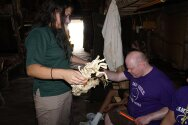Gonondogan staff showing campers Native American items