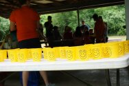 Camp Smile cups lined up on a table